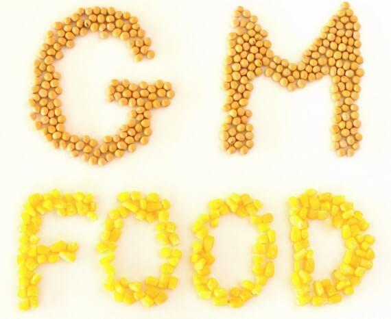 GM-Food words