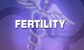 fertility eggs