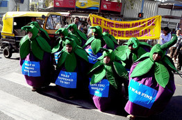 Greenpeace fruits dressed as vegetables in Bangalore in 2010. (Credit: European Pressphoto Agency)