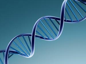 DNA (via Forbes)