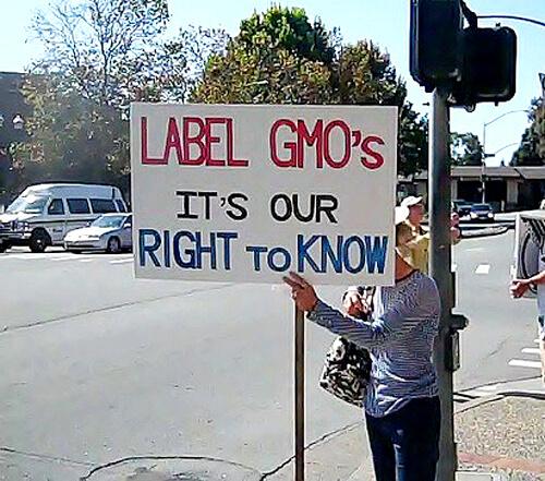 Image via Sustainable Pulse.