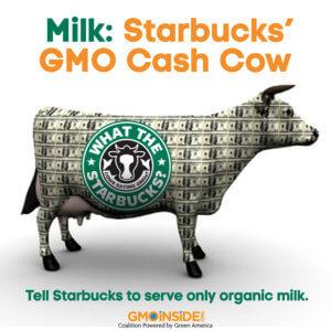 StarbucksCashCow_1a