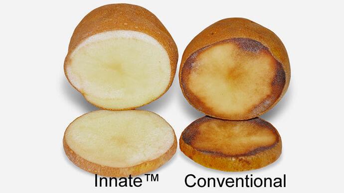 simplot-innate-potato-mcdonalds.si