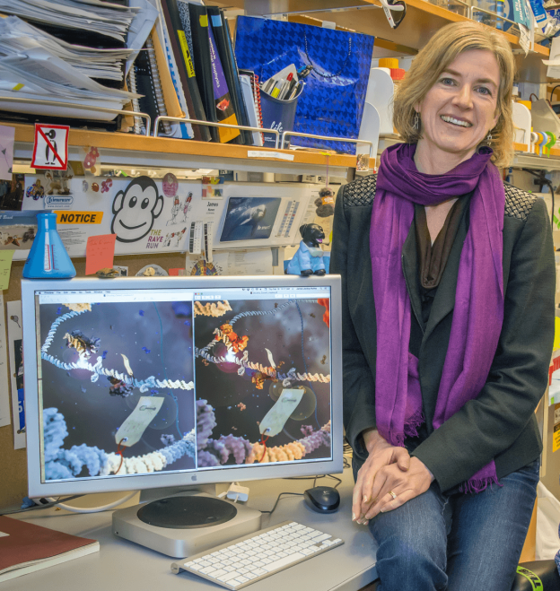 Jennifer Doudna from the University of California Berkeley, who was one a co-inventor of the CRISPR, recently called for caution in using the gene-editing technology on human cells. via US Department of Energy