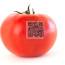 tomato_iStock_000015687674Small