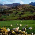 northern-ireland