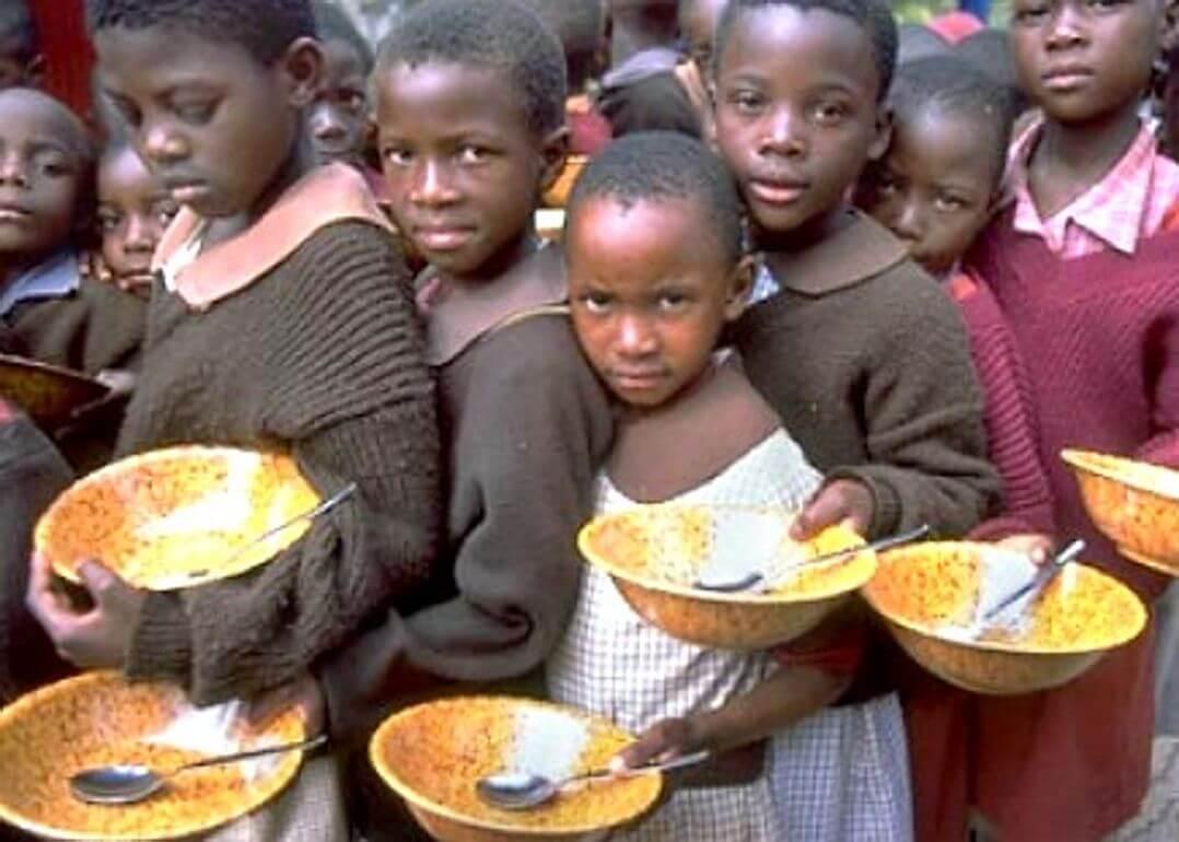 World hunger essays
