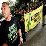 Daniel Ocampo of Greenpeace campaigns against field-testing of GMO crops in the Philippines. Photo from Greenpeace