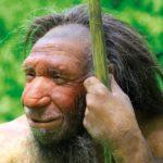 image_1626-Neanderthal-genome