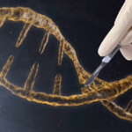 scientists-in-the-uk-could-win-approval-to-genetically-modify-human-embryos