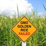 GMO-Golden-Rice-Failed-sign-960x480