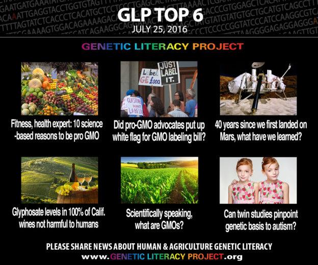 GLP Top Six