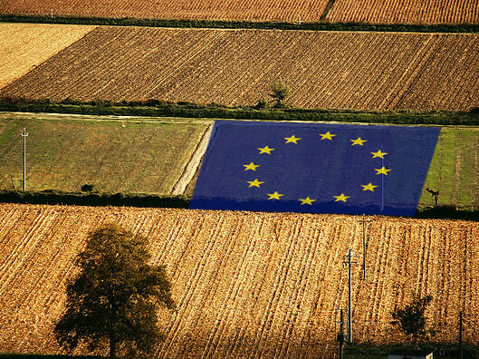 enlargement-of-the-eu-to-the-western-balkans-negotiations-on-agriculture