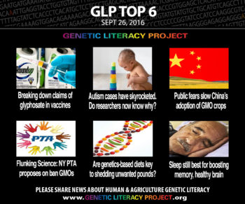 GLP Top Six