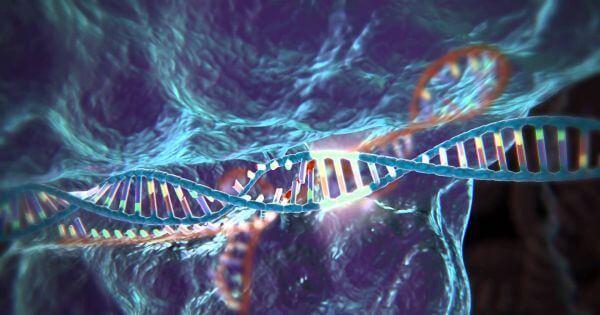 CRISPR-Cas9 editing a strand of DNA
